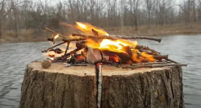 Burn the Stump
