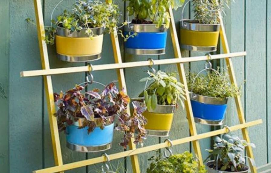 Wall Storage System herb garden